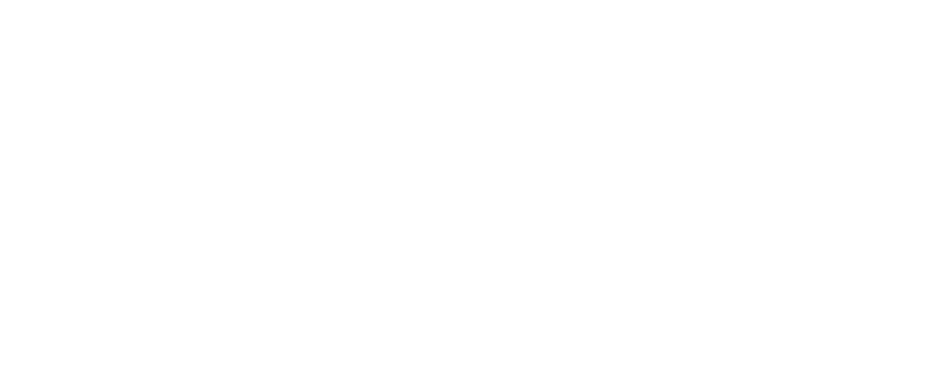 Capiforce Pierre